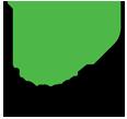 Pronex Group Logo