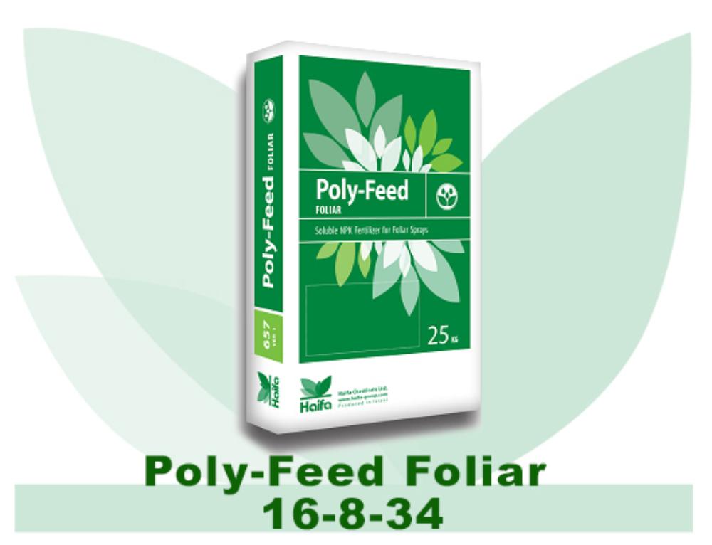 Poly-Feed Foliar 16-8-34